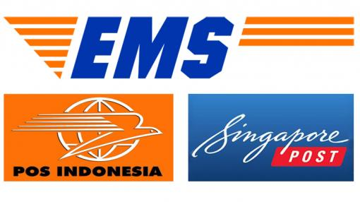 EMS twinning between Indonesia and Singapore